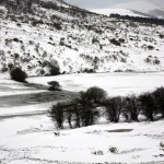 Camasobres-paisaje 013