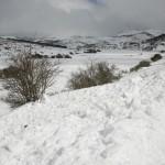 El Campo-paisaje 005