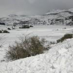 El Campo-paisaje 006