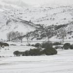 El Campo-paisaje 007
