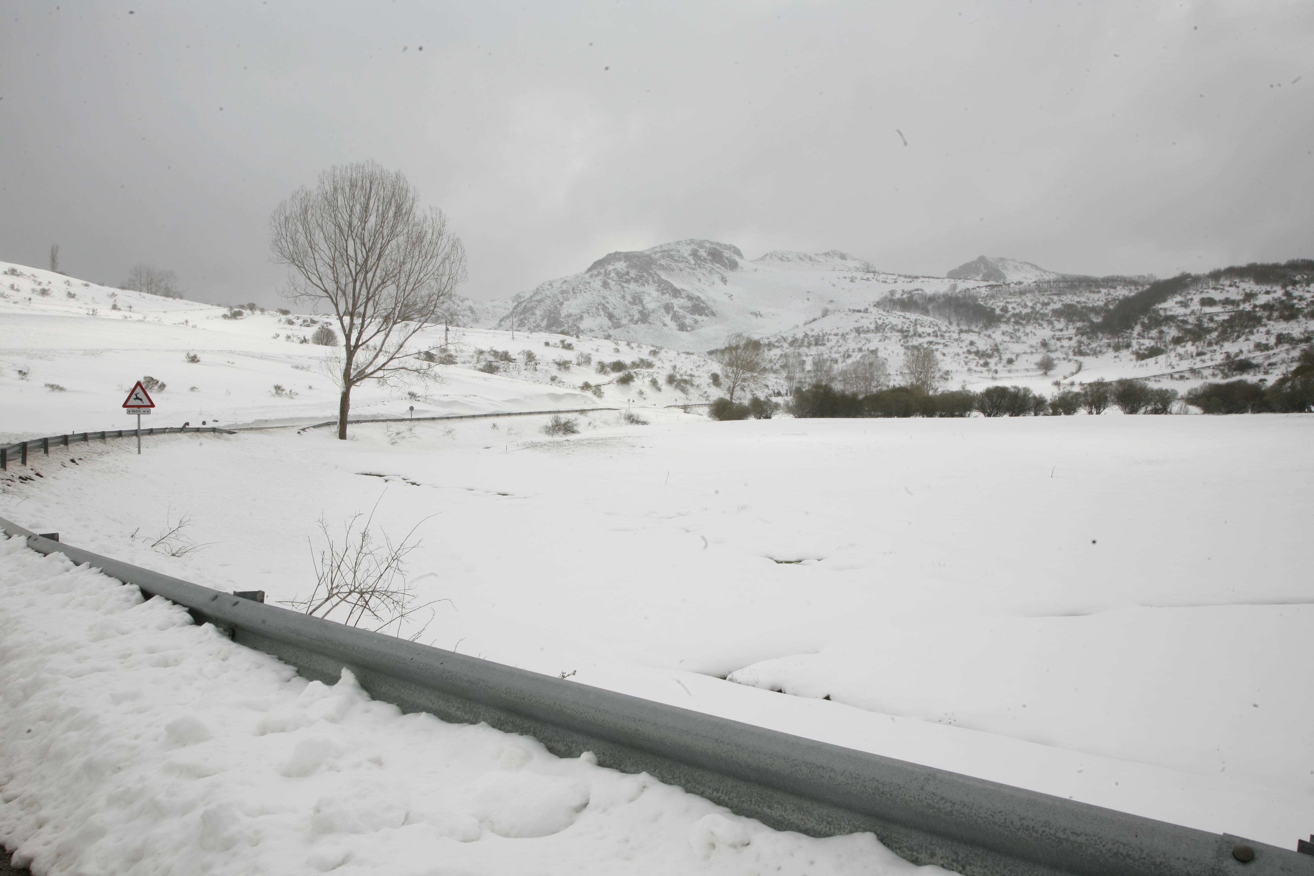 El Campo-paisaje 008