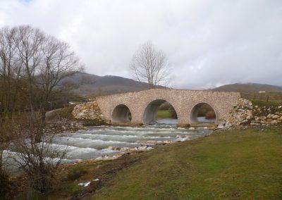 Patrimonio (31)